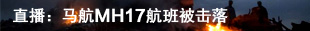 直播:马航MH17航班被击落